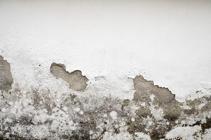 humidite mur detection fuite